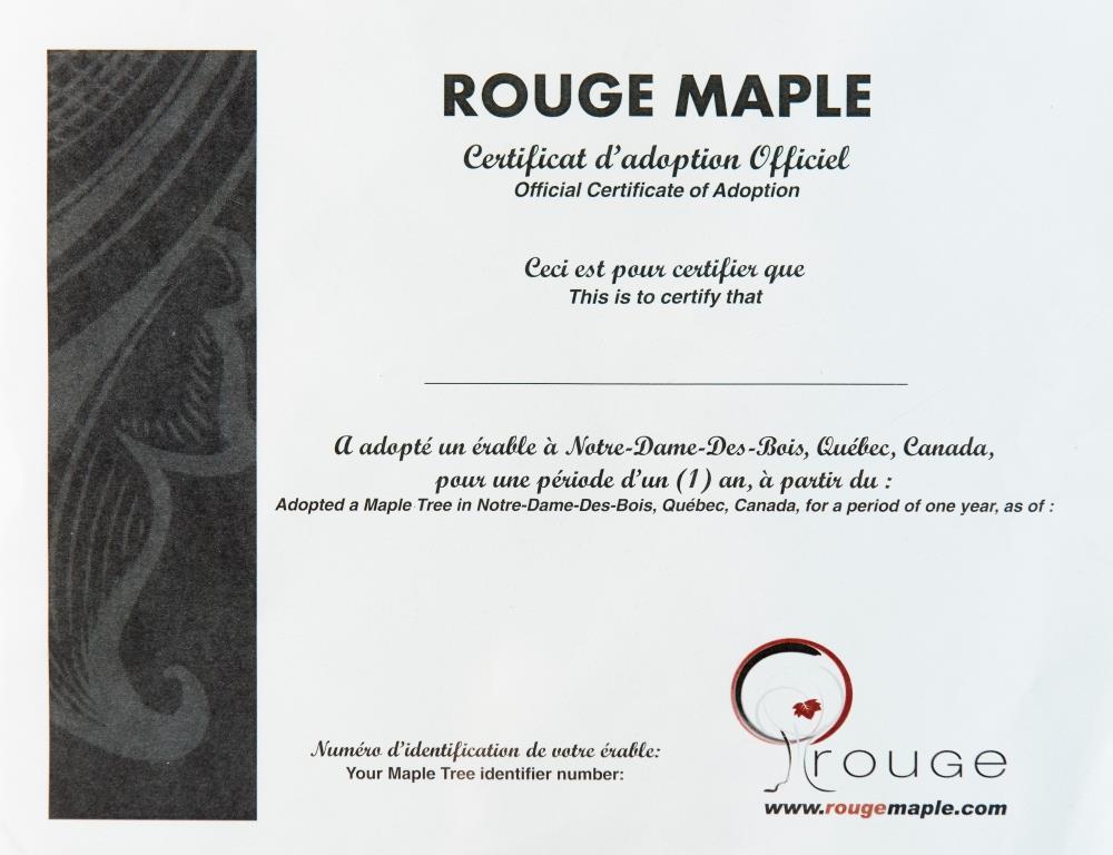 Celebrity Gift Set Rouge